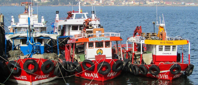 galicia and rias bajas coach tour