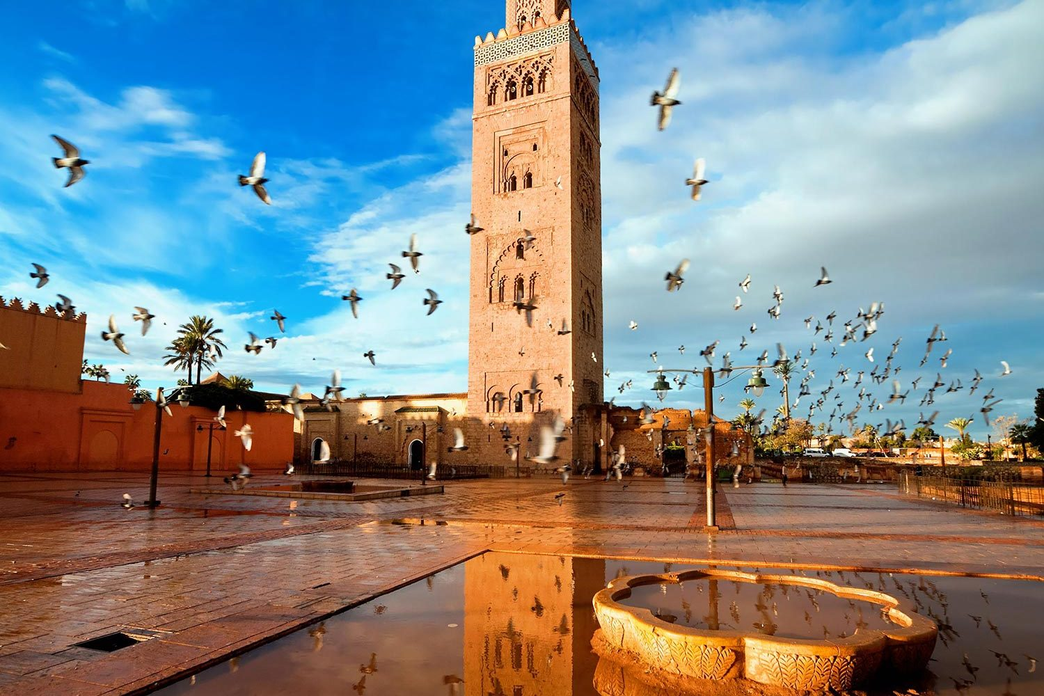 Costa Del Sol to Morocco