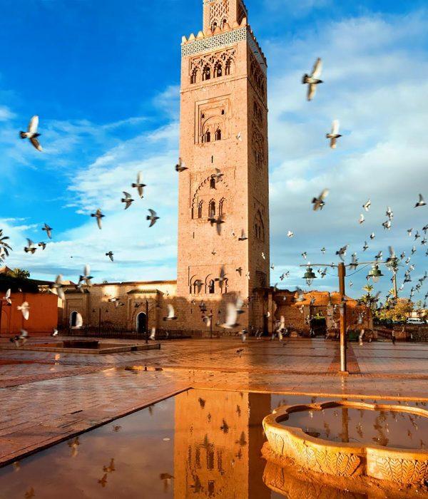 Costa Del Sol to Morocco
