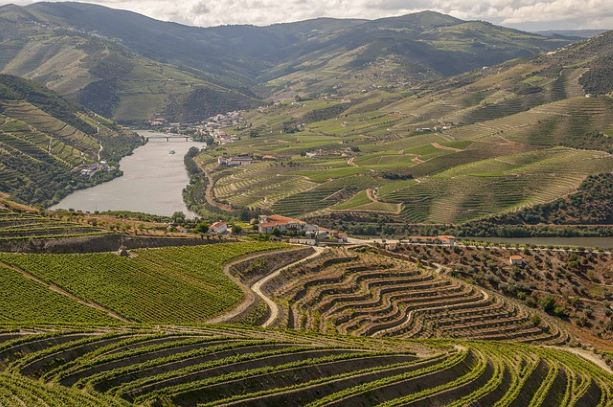 Douro River Cruise from Porto